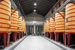 Bodegas Marqués de Riscal (Elciego, País Vasco, España, 28-10-2017) (Juanje Orío) Tags: 2017 elciego álava provinciadeálava paísvasco españa espagne espanha espanya spain euskadi vascongadas riojaalavesa bodega vino wine