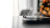 """Bud Lights"" (36D VIEW) Tags: minoltamcrokkorpf58mm14 minolta minoltarokkorpf58mm14 minoltalens minolta58mm 58mm sony a7m2 a7ii vintage mirrorless bokeh beyondbokeh legacy bokehlicious"