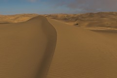 Sand (gecko47) Tags: dunes namibnaukluftpark coastaldunes atlanticcoast namibia drifts ridges windsculpture corrugations