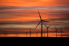 Same time same place (nwitthuhn) Tags: kansas sunset windturbines sky