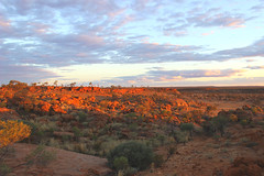 Breakaway Country at Sunset (Wooleen Station) Tags: sunset wooleen breakaway