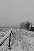 Descente bulgare (ZUHMHA) Tags: bulgarie bulgaria winter hiver sky snow tree road landscape paysage horizon perspective mogilovo ngc