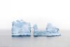 An Icy Perch (David Recht) Tags: antarctica lemaire island iceberg bird perch ice hikey