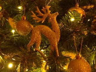 Besinnliche Weihnacht bei meiner Tochter ...