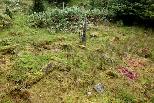 Sannaig stone row