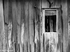 Unbenannt (weber.bert) Tags: oberflächenundmaterialien kram wanderungen analogefotografie blackwhite inbiancoenero noiretblanc grauwertabstufungen sw