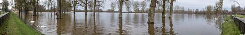 Hochwasser im Rheinstrandbad