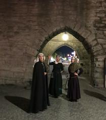 DLG-Gotland 3-2 (greger.ravik) Tags: visby medeltidsveckan medeltid middle ages medieval mur wall klänning dlg