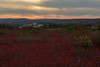 Sea'ing Red (Ken Krach Photography) Tags: dollysods westvirginia
