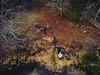 Drönare - Lövö - The crew - WEB (manuel ek) Tags: dji drone phantom midair fromabove sweden manuelekphoto photography landscape nature people crew family lövö