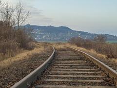 railway14 (Dreamaxjoe) Tags: vasút celldömölk iparvágány elhagyatott railway outofservicerailroadtrack aftersunrise napfelkelteután
