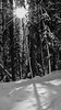 DS1_8051-bw (Cino Rider) Tags: nationalparks explorealberta winterlandscapes johnstoncanyon blackwhite monochromelandscapes