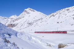 Lagalb d'hiver (Frédérick Jury) Tags: rhb train bahn bernina
