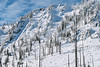 IMG_1770 (tbd513) Tags: newyears idaho snowboarding snowmobiling winter20172018