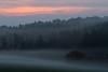 Morgenrot (MichaelMerl) Tags: oberpfalz bayern bavaria nikon sigma morgenrot fog nebel morgen