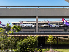 171209-10 HNL-NRT-03.jpg (Bruce Batten) Tags: usa aircraft plants subjects transportationinfrastructure buildings hawaii shadows locations hnl trips occasions airports trees reflections vehicles businessresearchtrips airplanes honolulu unitedstates us