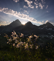 Columbine Rising (Maddog Murph) Tags: teton tetons grand wyoming mountains columbine sunstar beams daylight shining national park trail crest south middle peaks hurricane pass wall hiking trek landscape fine art