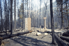 Snow Survey43.tif (NRCS Montana) Tags: snowsurvey snotel forest trees forestfire fire naturaldisasters