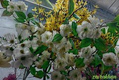 """""""One that desires to excel should endeavor in those things that are in themselves most excellent."""" Epictetus (zairakhan) Tags: loveforflowers flora flowers indoor whiteflowers bouquet edited"""