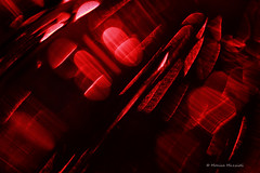 Abstract (Monica Muzzioli) Tags: christmas decoration abstract red macro sundaylights christmasspirit color colour blur ornament natale