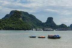Čilý ruch okolo přístavu (zcesty) Tags: vietnam17 skála moře loď krajina vietnam catba dosvěta hảiphòng vn