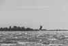 Finnland 2010 - Yytteri Beach (karlheinz klingbeil) Tags: finnland surfing beach ostsee meer strand finland water monochrome kitesurfing wasser ozean balticsea suomi ocean