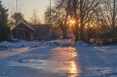 Elements (RdeUppsala) Tags: sverige sweden suecia sunset atardecer invierno ice is casas sun sol hielo frost escarcha evening uppsala uppland ricardofeinstein winter vinter landscape landskap paisaje