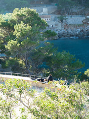 2017-01-04 - Mallorca - 264 (johndreck) Tags: portdesacalobra illesbalears spanien es