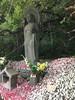 (Stop carbon pollution) Tags: japan 日本 honshuu 本州 kantou 関東 chibaken 千葉県 jizou