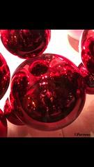 Christmas' reflection (farrese) Tags: bubbles burbujas bolas christmas navidad rojo red reflejo reflection canon canonistas