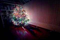 360/365 - looking for that last elusive gift (possessed2fisheye) Tags: possessed2fisheye scottmacbride scott creativeselfportrait creative creativephotography creativeportrait selfportrait self christmastree christmas christmaslights selfie 365 365project project365 2017 project3652017 365project2017