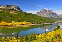 Canada, Autumn scenery (Vittorio Ricci (thanks +++ 3.3 millions views)) Tags: canada alberta canadianrockies