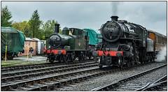 1450 & 'The Pig' (Rob-33) Tags: svr severnvalleyrailway steamrailway steampreservation steamlocomotive pentaxk3 bewdleystation 1450 tankengine uksteam