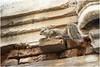 "India Travel Photography ""Old City of Ahmedabad"" Gujarat.040 by Hans Hendriksen (Travel Photography - Reisfotografie) Tags: west india gujarat kutch индии гуджарат travel reisfotografie reis reisfoto religion religie temple tempel hindoe hindu jain veg somnath gondal diu palitana junagadh bhuj bajana patan ahmedabad little great rann landscape nature cultuur culture beschaving civilisation unesco heritage salt factory bohra haveli sidhpur adi rani kivav election bhp congressparty market sri shree swaminarayan tomb ahmad shah sun modhera vanakbara fish rogan nirona village adpur stpauls stthomas church sabarmati ashram gandhi jama mashid adalaj stepwell"