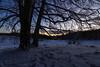 IMG_8019.jpg (MSPhotography-Art) Tags: morgen schnee dämmerung alb landscape landschaft winter snow