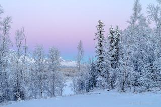Winter Wonderland in Wasilla