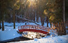 Snowy Bridge, Forest Park (Joe Rito) Tags: rokinon forestpark bridge sunlight winter