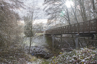 Cold Bridge