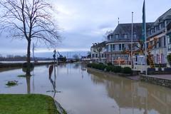 Flood (ivlys) Tags: deutschland allemagne germany rhein rhine fluss river oestrichwinkel hochwasser flood landschaft landscape natur nature ivlys