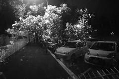 01.02 Dream of the sleeping cars (dd66h14) Tags: project365 365project doubleexposure incamera cars night lowkey nikon nikoncamera