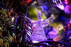 'Tis The Season (otterdrivernw) Tags: bokeh xf100400 xt2 fujix fujifilm purple holidays tree christmas glass angel ornament
