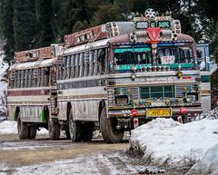 Busses - Kashmir