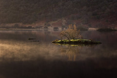 statuesque (akh1981) Tags: manfrotto travel trees tranquil tamron cumbria calm crummock landscape lakedistrict lake outdoors walking water