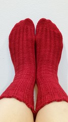 20171219_202512 (AdrienneC) Tags: knits knitting socks theuncommonthread lushfingering carmine wool merino