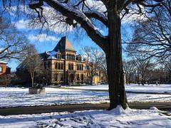 (Cjin99) Tags: providence rhodeisland unitedstates us ri brownuniversity nature tree architecture winter snow maingreen