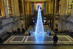 Natale in Stazione Centrale (STE) Tags: milano milan stazione centrale central station natale christmas sony rx100m4 tree albero