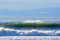 TRANSLUCENT SUNLET WAVES,  SURF ON CHRISTMAS DAY.    SOOKE,  STRAIT OF JUAN DE FUCA,  VANCOUVER ISLAND,  BC. (vermillion$baby) Tags: christmasday straitofjuandefuca vancouverisland surf wave vancouver bc water splash translucent ocean sea pacific color
