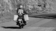 On the road downhill to Sapa (gerard eder) Tags: world travel reise viajes asia southeastasia vietnam northernvietnam sapa motorcycles people peopleoftheworld road street streetlife outdoor blackandwhite blackwhite blancoynegro bw sw