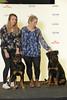 BIR valp Grupp 2: Black Fashion's Desoto (Svenska Mässan) Tags: mydog bir birmydog