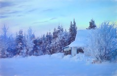 Cottage in the woods (JLS Photography - Alaska) Tags: alaska alaskalandscape art beautifulscenery cold digitalmanipulation digitalart forest home house cottage jlsphotographyalaska wilderness winter winterlandscape frosty frozen snow january landscape landscapes outside painterly painting sky serene tree building
